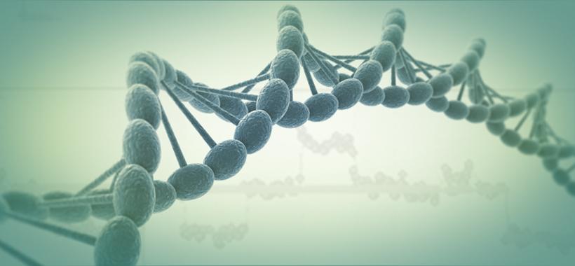 How do you Prioritize Mosaic Embryos for Transfer?